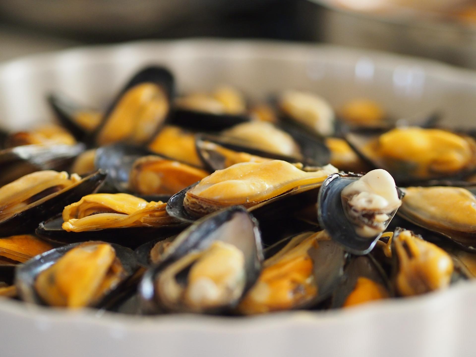 seafood-670948_1920